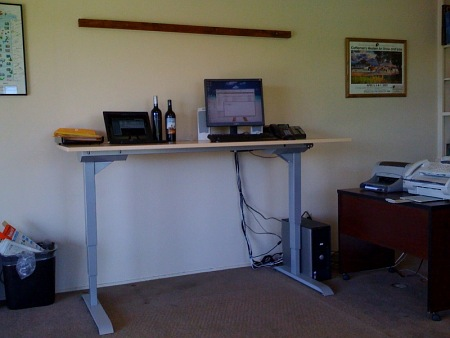 Examples of Excellence Stand Up Desk