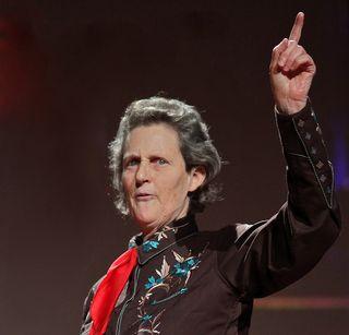 Temple-Grandin 2