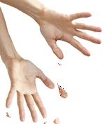 EE-hands